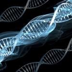 global warming, change in genetics1