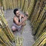 A labourer works at a sugarcane wholesale market in the eastern Indian city of Siliguri