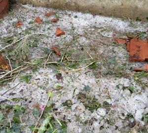 hailstrom in Madhya Pradesh