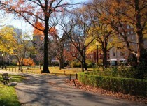 Park-Life-Boston-USA-1280x853 Cropped