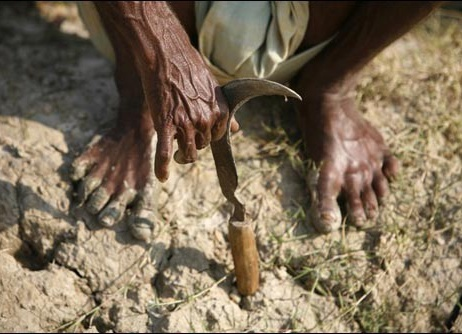 Farmers suicide in Maharshtra