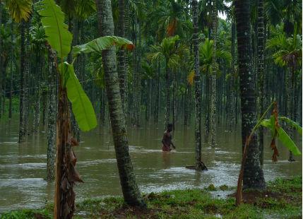 Kerala Witnesses Moderate To Heavy Rain Skymet Weather