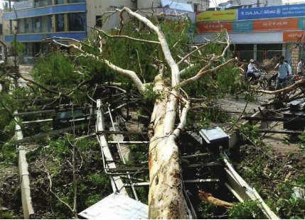 Storm in Bihar