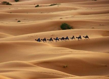 Summers in Jaisalmer