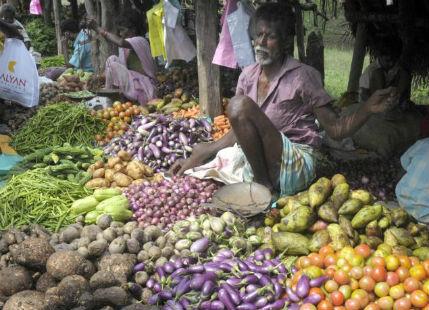 Vegetable price rise