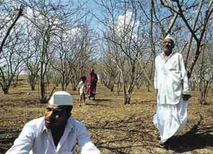 Maharashtra_drought