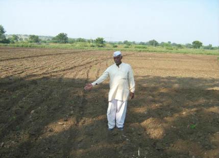 Marathwada farm