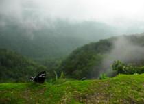 Western Ghats Biodiversity Conservation