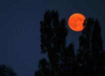 Super Blood Moon India