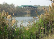 Coming up: 75 acre Biodiversity Park in Noida