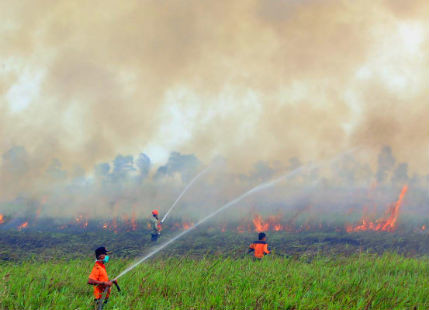 Indonesian Wildfires