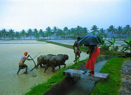 Weather Peninsular India