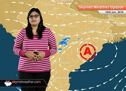 Weather Forecast for January 16: Wintry chill to increase over hills of North India