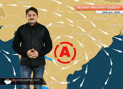 Weather Forecast for January 25: No relief from cold wave over north and central India