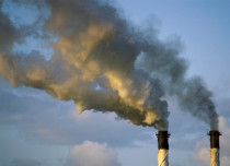 Climate Change: India cuts carbon emissions by 12 percent