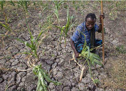 Crop production loss