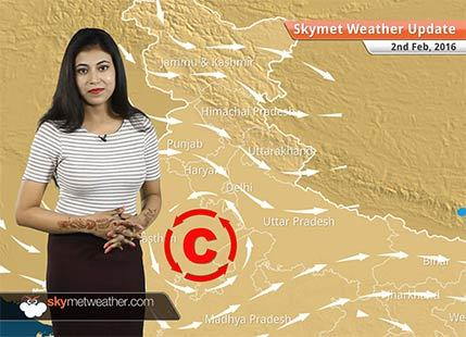 Weather Forecast for February 02: Winter retreating from most parts of India