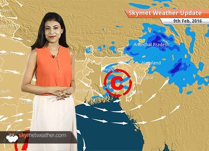 Weather Forecast for February 09: Northern plains, Delhi-NCR to witness single digit temperatures