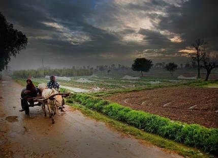 Punjab in rain