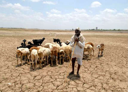Droughtnew in India