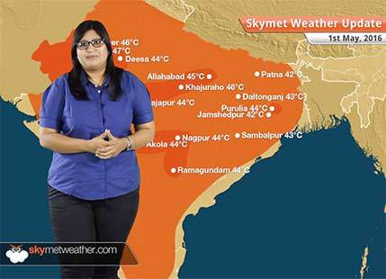 Weather Forecast for May 1: Rain in Odisha, Telangana, heatwave in Rajasthan, Kerala