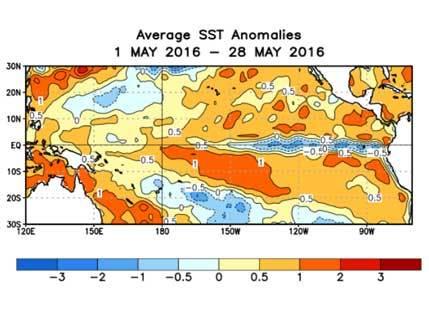 El Nino latest
