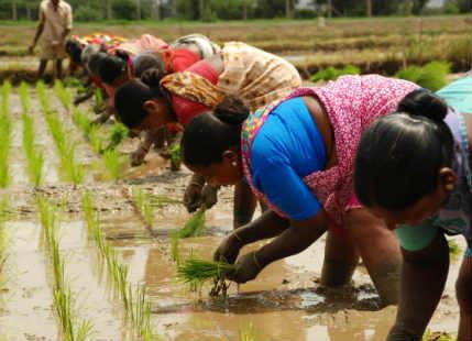 Good Monsoon push growth
