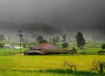 Monsoon 2016 Forecast