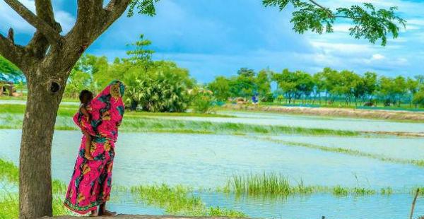 Odisha Rains 1