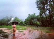 Odisha Rains 2