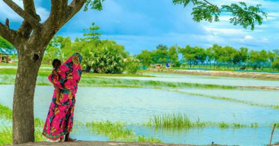 Odisha Rains 3