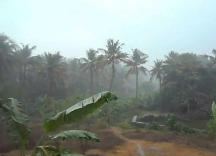 kerala rains feature