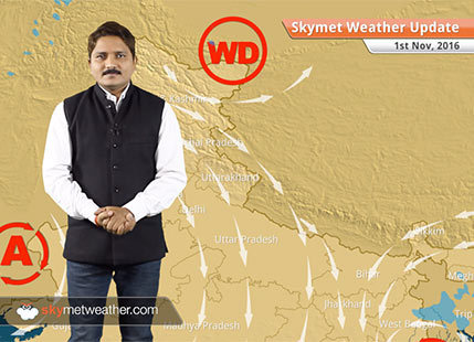Weather Forecast for Nov 1: Rain in Andaman, Tamil Nadu and Andhra Pradesh