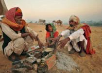Rajasthan Winters