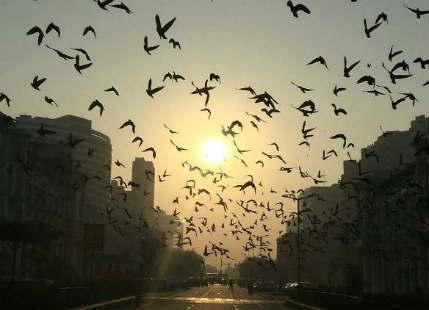 Delhi recorded season's lowest minimum temperature of 8.4°C today