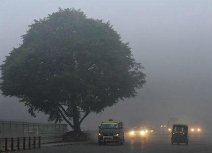 Bihar, East Uttar Pradesh residents wake up to another foggy morning