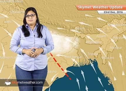 Weather Forecast for Dec 23: Fog in East UP, Bihar, comfortable weather in Delhi