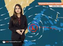 Weather Forecast for Dec 19: Rain in TN, Chennai; Fog in UP, Bihar