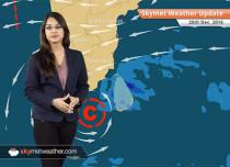 Weather Forecast for Dec 20: Fog in Punjab, Haryana, UP; Rain in Tamil Nadu