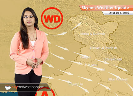 Weather Forecast for Dec 21: Fog in Delhi, Punjab, UP, Bihar; Rain in TN, Kerala