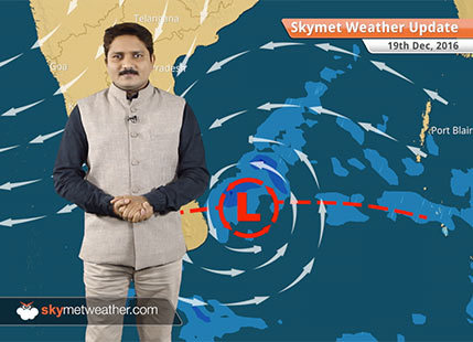 Weather Forecast for Dec 19: Fog in Punjab, UP, Bihar; Rain in Chennai
