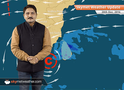 Weather Forecast for Dec 20: Fog in UP, Bihar; Rain in Tamil Nadu, Chennai
