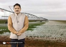 Chilly Weather and Ground frost affecting crops across Haryana and Punjab