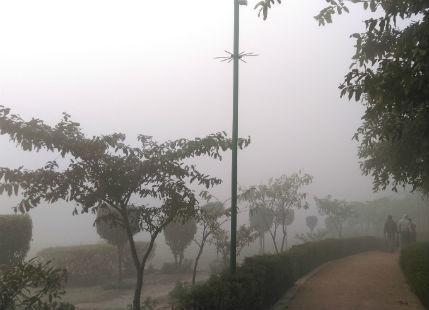 Delhi fog and winter
