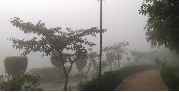 Delhi fog and winter