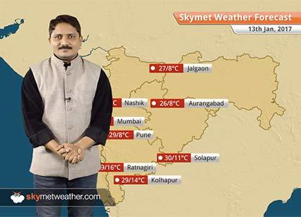 Weather Forecast for Maharashtra for Jan 13: Cold wave conditions will continue in several parts of Maharashtra
