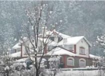 Gulmarg snow