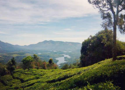 Light rain in Kerala won't mellow off the humid weather