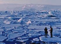 Refreeze Arctic - 2