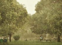 Delhi Rains 2